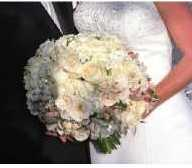 Wedding_plannerdvd_1
